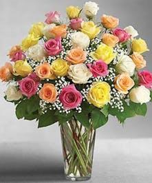 Three Dozen Roses in Port Charlotte FL, Port Charlotte Florist