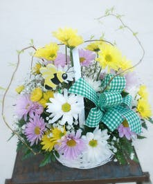 Springy daisy basket | Port Charlotte, North Port, Punta Gorda, Florida