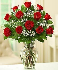 One Dozen Roses in Port Charlotte FL, Port Charlotte Florist
