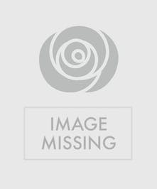 Have a Holly Jolly Christmas with this beautiful centerpiece on your table | Christmas Flowers Port Charlotte, Florida