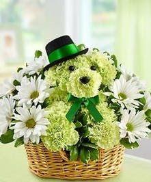 Lucky Dog Basket - Green carnations, daisies and a wicker basket