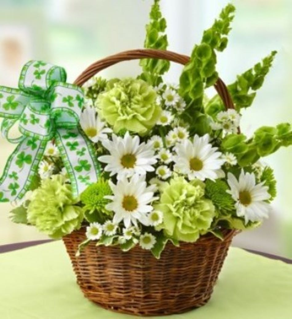 Shamrock basket shamrock basket bells of ireland daisies green carnations and poms izmirmasajfo
