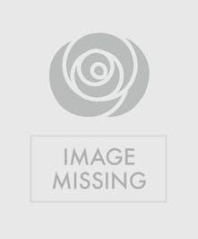 ShamRockin - Green carnations, white daisies and mini white carnations