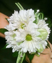 Adorable daisy wrist corsage for homecoming, prom or a wedding