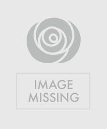 Crowd Pleaser Gourmet Gift Basket, Port Charlotte, Punta Gorda, North Port Florida