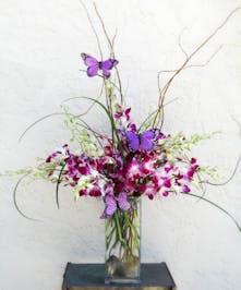 Orchids & Butterflies - Dendrobium orchids, purple and butterflies