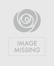 Pretty Pastel - Elegant greenry embraces pastel roses and hydranges in a clear glass vase,