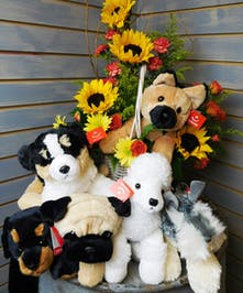 Puppy Flower Basket  - carnations, roses, curly willow, daisies, salidago and sunflowers. Plush stuffed puppy.