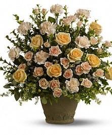 Rose remembrance in Port Charlotte FL, Port Charlotte Florist