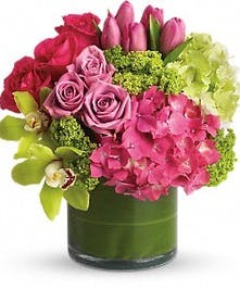 New Sensations Hydrangeas, roses, tulips, orchids
