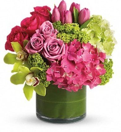New Sensations Hydrangeas, roses, tulips, orchids