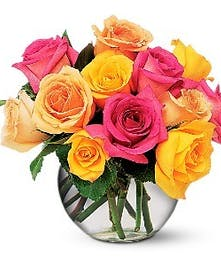 Multi-Colored Roses in Port Charlotte FL, Port Charlotte Florist