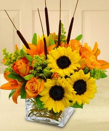 Fall into colors with this modern cube vase arrangement.