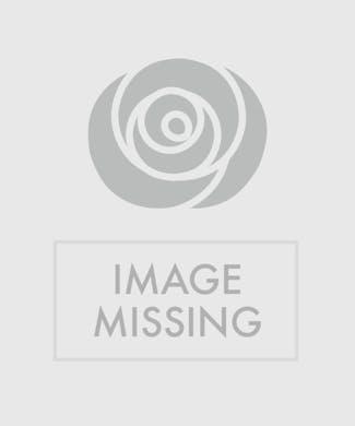Birthday Flowers Gift Baskets