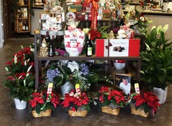 In addition to flowers and plants, Port Charlotte Florist offers a range of gifts and decorations